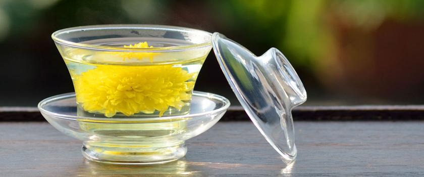 The-Use-of-Chrysanthemum-Tea