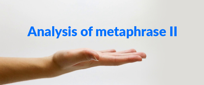 Analysis-of-metaphrase-II