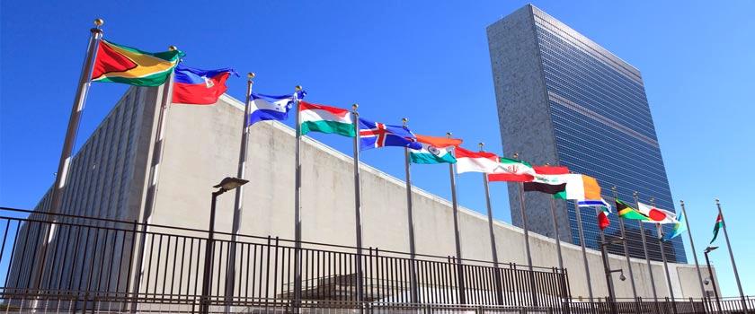 UN languages translation services